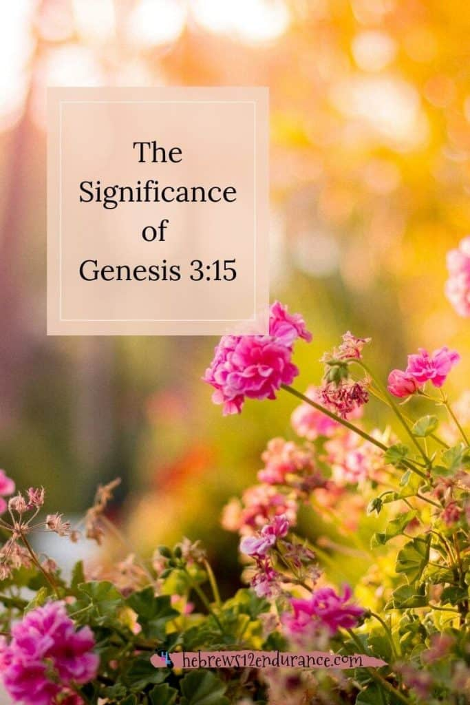 The Significance of Genesis 3 15
