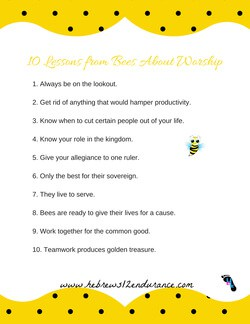 Lessons about bees printable