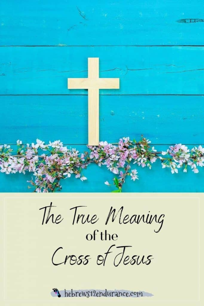 The True Meaning of the Cross of Jesus
