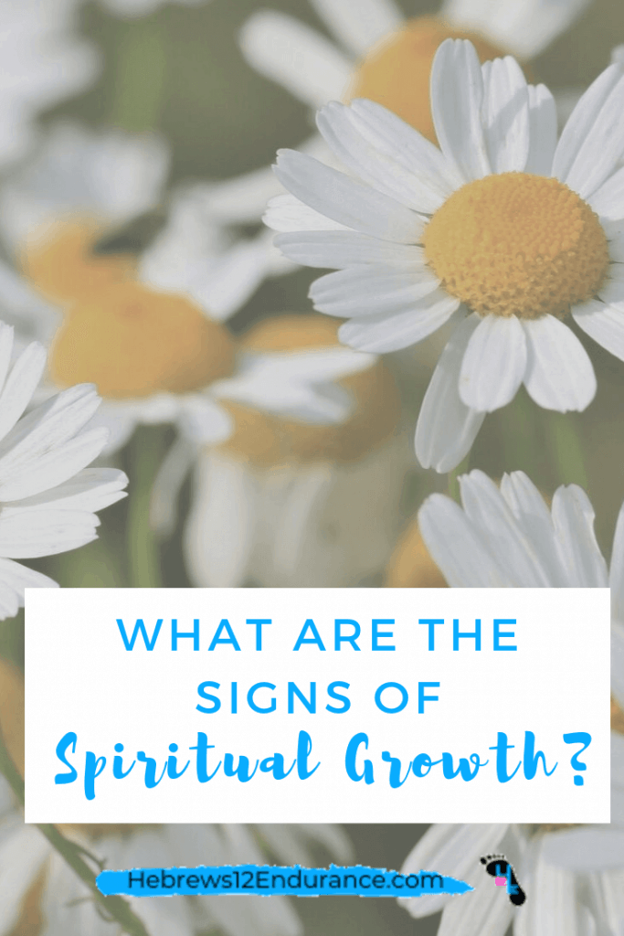Signs of Spiritual Growth