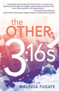 The Other 3:16s