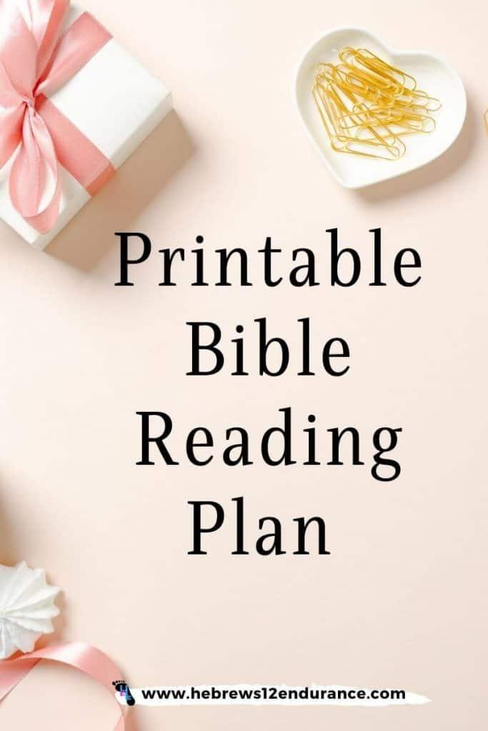 12 month Printable Bible reading plan